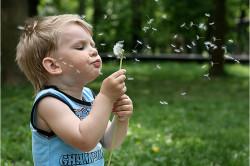 Аллергия - причина появления обструктивного бронхита