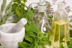 Лекарственные растения для лечения бронхита